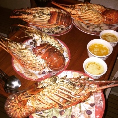Epic lobsters